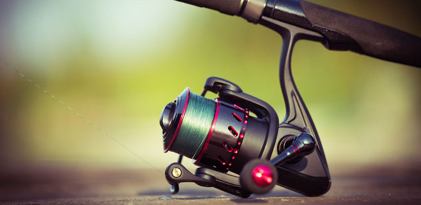 Best Spinning Reel For The Money