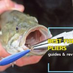 A Fish in the plier